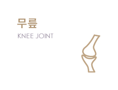 ���� KNEE JOINT