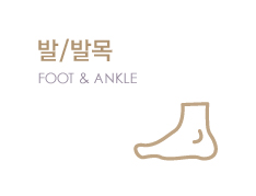 ��/�߸� FOOT/ANKLE